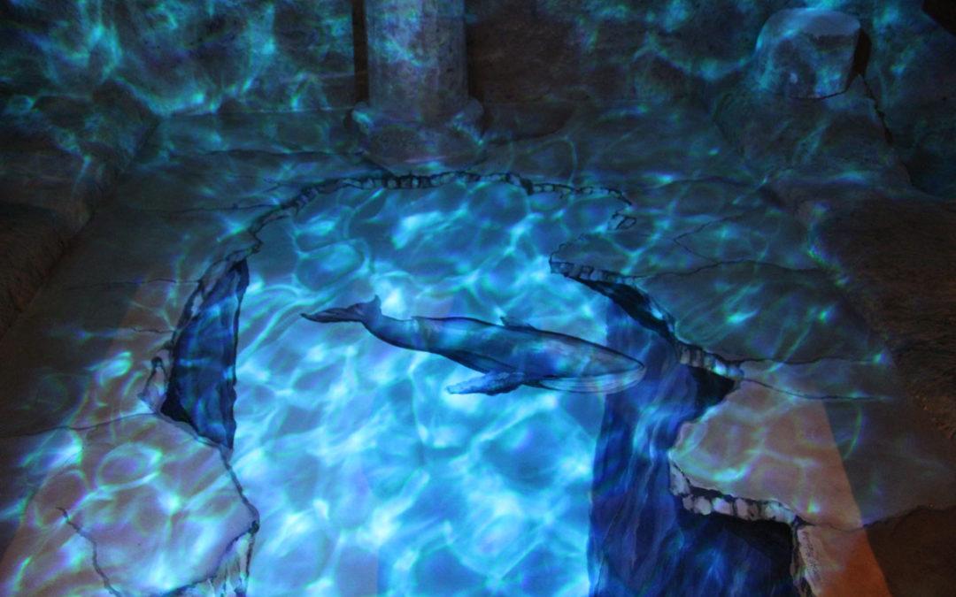 Riproduzione 3D di Giuliana, la balena di Matera