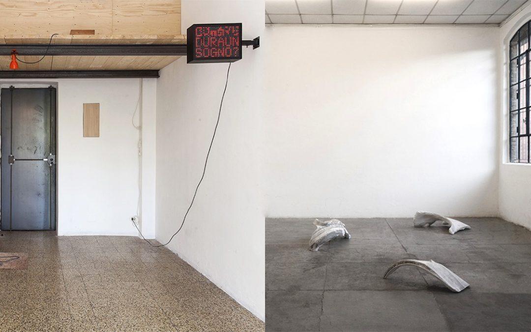 Index - repertorio d'arte contemporanea in Basilicata